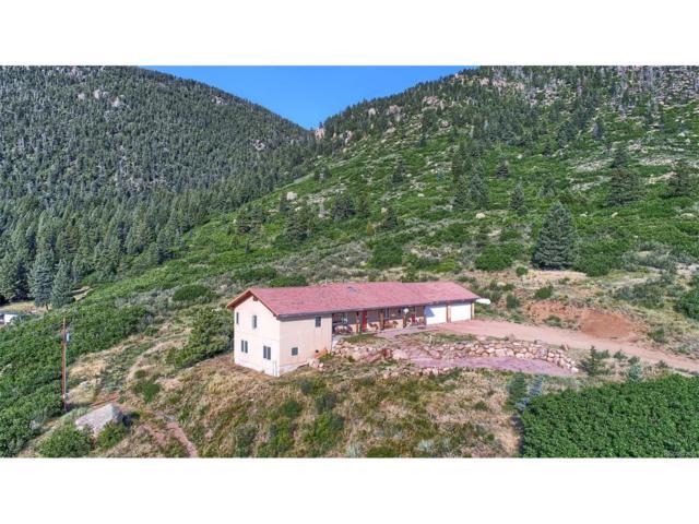 4330 Green Mountain Drive, Colorado Springs, CO 80921 (#3973723) :: Wisdom Real Estate