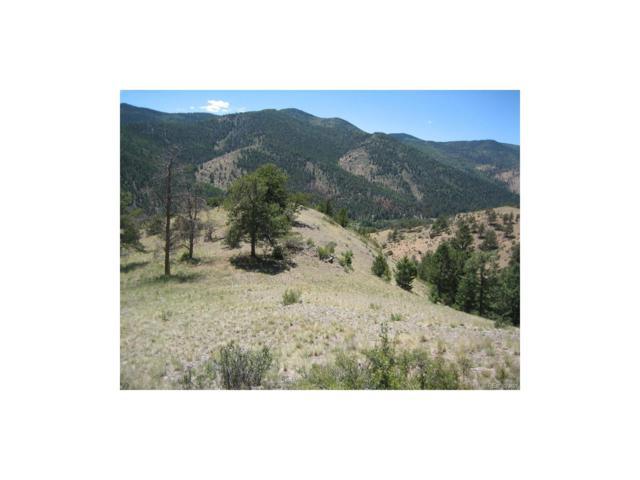Big Tree Lane, Villa Grove, CO 81155 (MLS #3973900) :: 8z Real Estate
