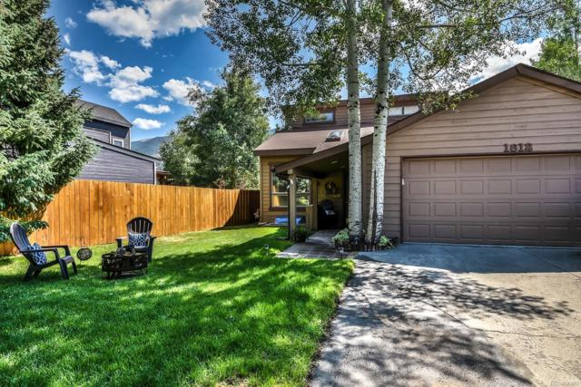 1612 N Chipmunk Lane, Silverthorne, CO 80498 (#3974264) :: The Pete Cook Home Group