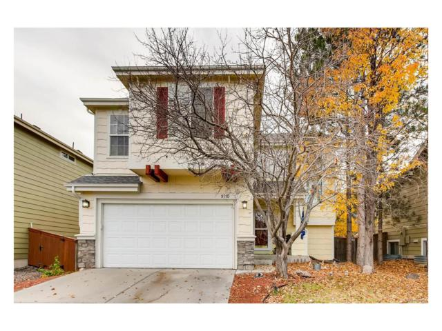 9710 Burberry Way, Highlands Ranch, CO 80129 (#3976024) :: The Peak Properties Group