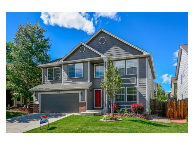 5630 Spruce Avenue, Castle Rock, CO 80104 (#3978857) :: The Peak Properties Group
