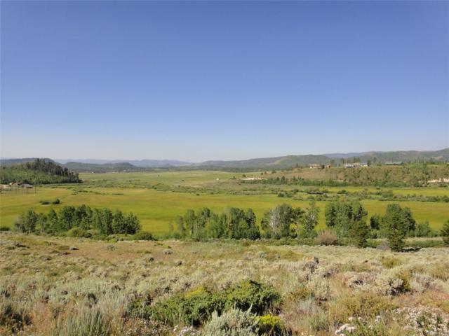 County Road 4491, Grand Lake, CO 80447 (#3981431) :: Bring Home Denver