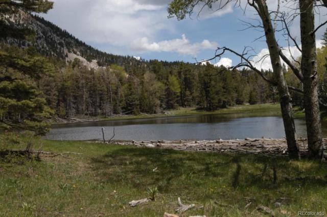 Lot 29 Tres Valles West, La Veta, CO 81055 (#3983345) :: Compass Colorado Realty