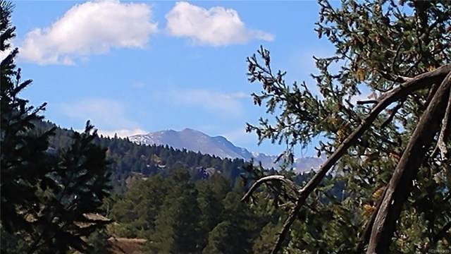 28298 Lone Elk Trail, Evergreen, CO 80439 (#3984433) :: The Peak Properties Group
