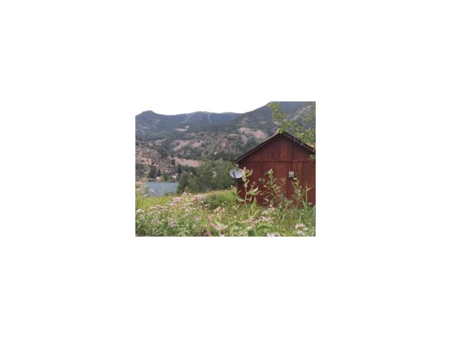 315 S Charles Street, Silver Plume, CO 80476 (MLS #3986251) :: 8z Real Estate