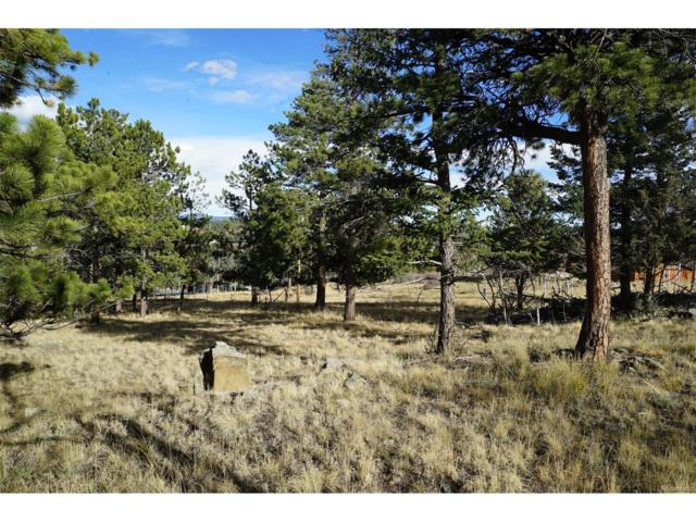 136 Gail Lane, Bailey, CO 80421 (MLS #3988893) :: 8z Real Estate