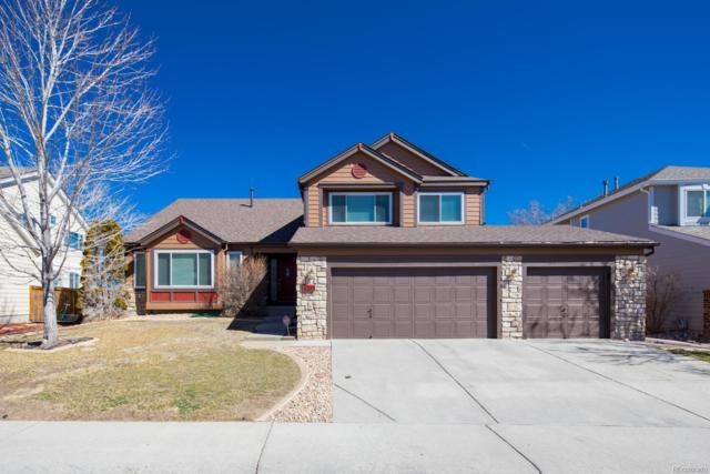 4203 Lark Sparrow Street, Highlands Ranch, CO 80126 (#3992593) :: Colorado Home Finder Realty