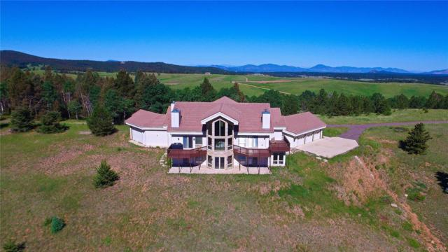 4755 Elk Valley Road, Divide, CO 80814 (#3997448) :: The Healey Group