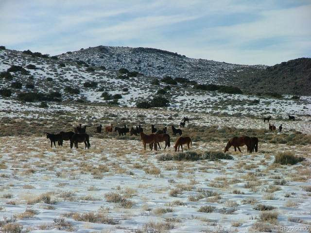 T.B.D. Vacant Land, San Luis, CO 81152 (#4002916) :: The DeGrood Team