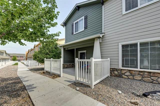 3090 Shikra View, Colorado Springs, CO 80916 (#4003215) :: Signature Realty, Inc.