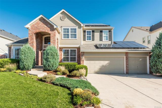 849 Countrybriar Lane, Highlands Ranch, CO 80129 (#4004133) :: The DeGrood Team