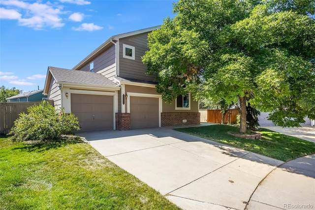 8781 Little Gull Court, Highlands Ranch, CO 80126 (#4008246) :: THE SIMPLE LIFE, Brokered by eXp Realty