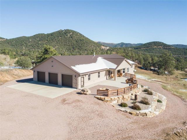 767 Dave Drive, Canon City, CO 81212 (#4010534) :: The Tamborra Team