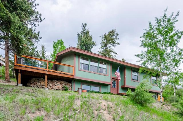 7151 Brook Forest Drive, Evergreen, CO 80439 (#4011828) :: Bring Home Denver
