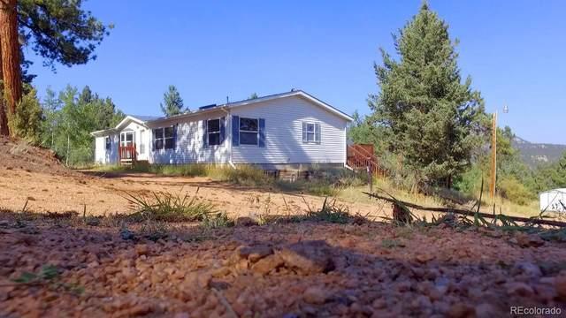 12841 S Thelma Avenue, Pine, CO 80470 (#4012110) :: The HomeSmiths Team - Keller Williams