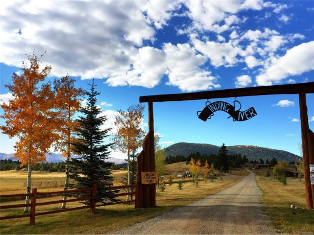 1667 County Rd 22, Fairplay, CO 80440 (MLS #4013790) :: 8z Real Estate