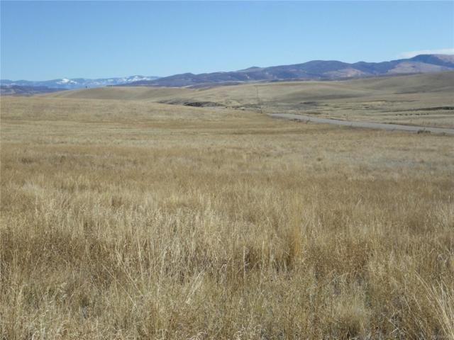 36705 County Road 59, Hayden, CO 81639 (#4014086) :: Wisdom Real Estate
