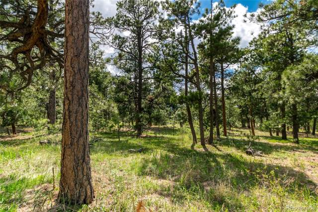 19245 Hilltop Pines Path, Monument, CO 80132 (#4016025) :: The DeGrood Team