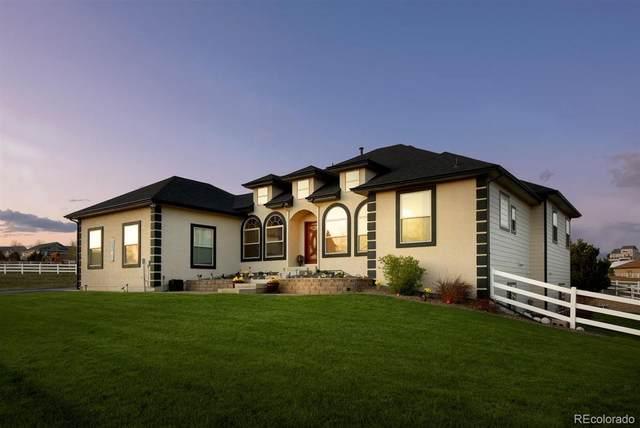 10031 E 142nd Avenue, Thornton, CO 80602 (MLS #4022393) :: 8z Real Estate