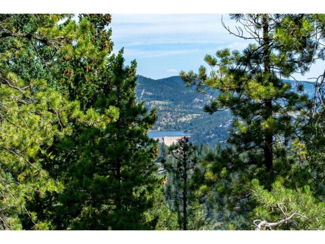 93 Gross Dam Road, Golden, CO 80403 (MLS #4025038) :: 8z Real Estate