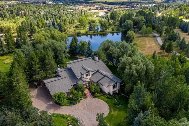 855 Fox Lane, Steamboat Springs, CO 80487 (MLS #4025730) :: 8z Real Estate