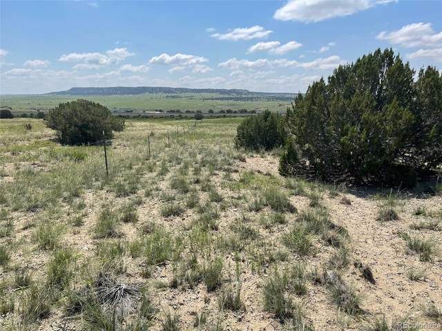 241 Morning Star Road, Rye, CO 81069 (#4025896) :: The Griffith Home Team