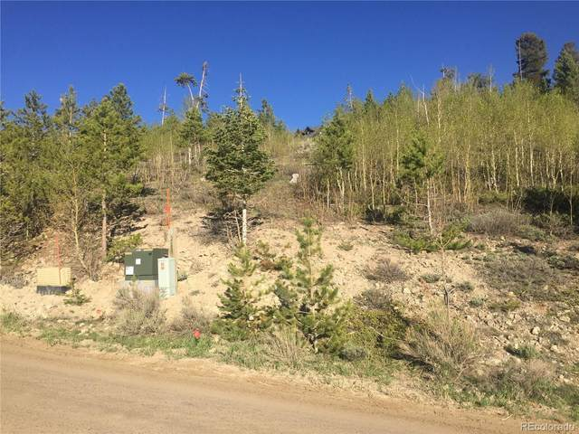 254 County Road 8952, Granby, CO 80446 (MLS #4029010) :: Bliss Realty Group