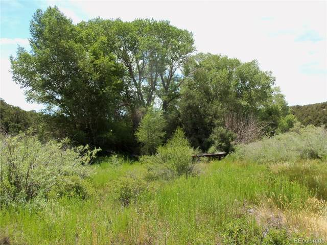 1558 Balleroy Road, San Luis, CO 81152 (#4032862) :: The DeGrood Team