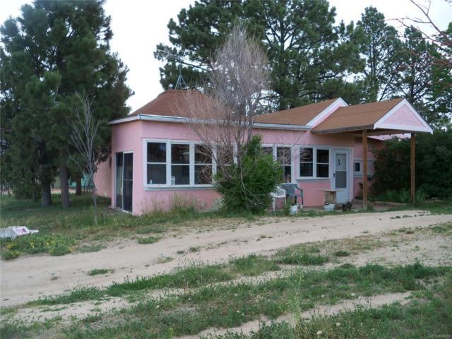 600 Cheyenne Avenue, Simla, CO 80835 (MLS #4033021) :: 8z Real Estate