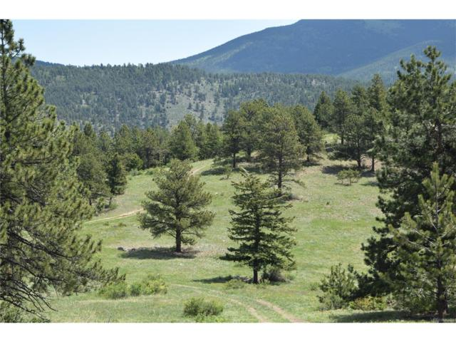 008 Parcel Near Lake Gulch Road, Central City, CO 80422 (MLS #4034070) :: 8z Real Estate