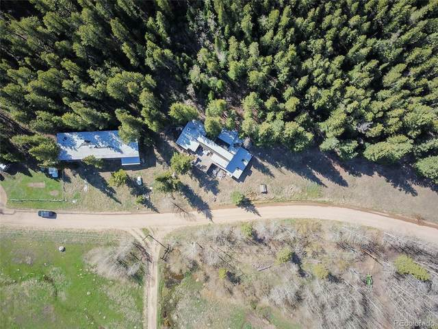 Beaver Creek Drive, Nederland, CO 80466 (#4036646) :: The Griffith Home Team