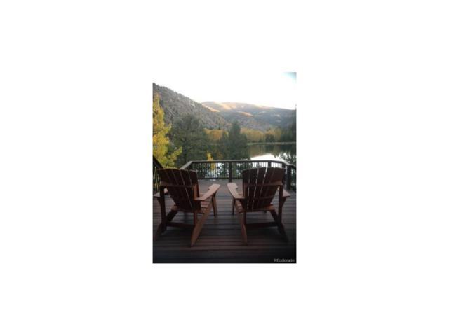 183 Copper Fox Trail, Empire, CO 80438 (MLS #4038037) :: 8z Real Estate