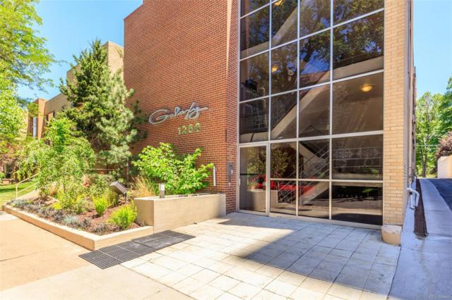 1260 N Humboldt Street #4, Denver, CO 80218 (#4040445) :: The DeGrood Team