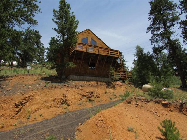 175 Gross Road, Bailey, CO 80421 (#4042127) :: The Pete Cook Home Group
