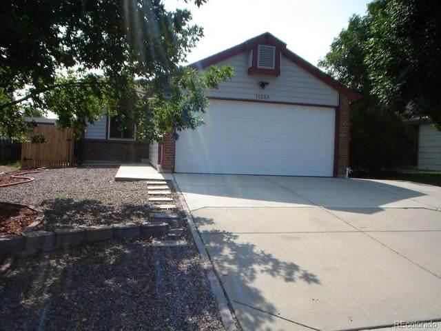 11233 N Dexter Street, Thornton, CO 80233 (#4046825) :: Wisdom Real Estate