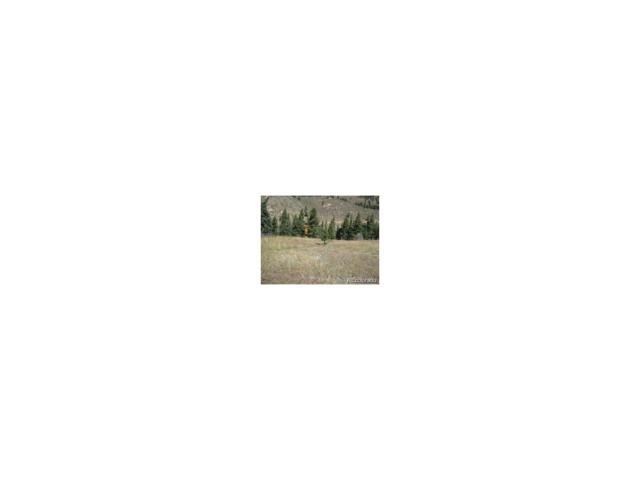 323 N Fork Road, Grant, CO 80448 (MLS #4046858) :: 8z Real Estate