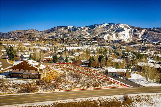 1543-1545 Mark Twain Court, Steamboat Springs, CO 80487 (#4048544) :: The DeGrood Team