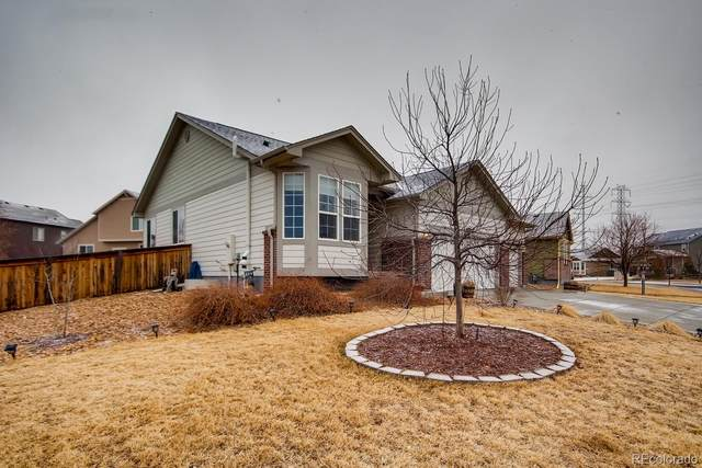15520 Carob Circle, Parker, CO 80134 (#4050459) :: The Harling Team @ Homesmart Realty Group