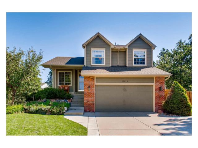 11614 Club Drive, Parker, CO 80138 (#4051282) :: The Dixon Group