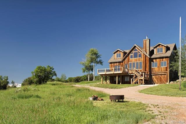 305 Buck Point Drive, Carbondale, CO 81623 (MLS #4052570) :: 8z Real Estate