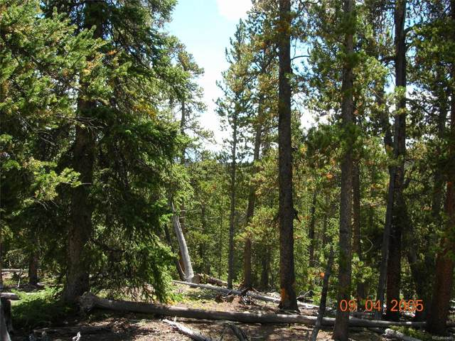 0612 Puma Place, Fairplay, CO 80440 (MLS #4052721) :: 8z Real Estate