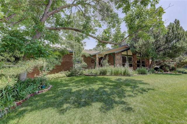 3350 Braun Court, Golden, CO 80401 (MLS #4053247) :: 8z Real Estate
