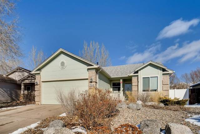 7016 Maram Way, Fountain, CO 80817 (MLS #4054839) :: 8z Real Estate