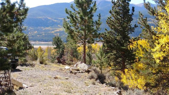000 Cr 26, Twin Lakes, CO 81251 (#4060883) :: Compass Colorado Realty