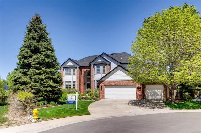 10734 Cougar Ridge, Lone Tree, CO 80124 (#4065589) :: Briggs American Properties