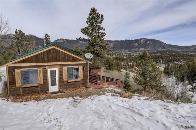 341 Bristlecone Circle, Bailey, CO 80421 (#4066657) :: Colorado Home Finder Realty