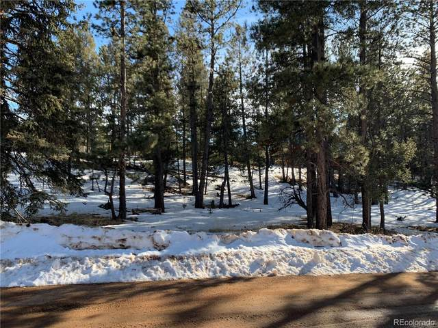 158 Paint Pony Lane, Florissant, CO 80816 (MLS #4068174) :: 8z Real Estate