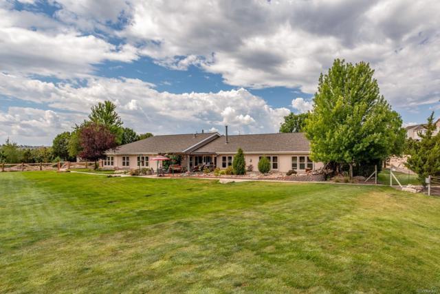1060 N Tabor Drive, Castle Rock, CO 80104 (#4068316) :: The HomeSmiths Team - Keller Williams