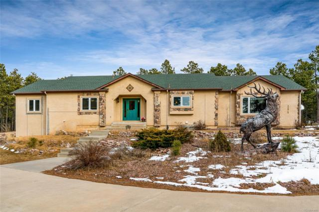 17905 Martingale Road, Monument, CO 80132 (#4069699) :: The Peak Properties Group