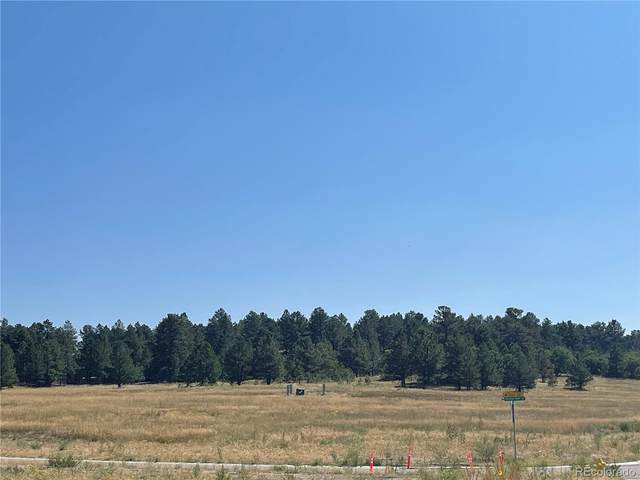 85 Evening Hunt Road, Franktown, CO 80116 (#4072130) :: The DeGrood Team